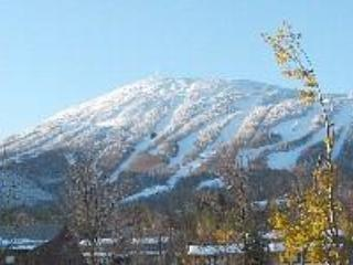 BUDGET RENT  for skiing Sugarloaf . - Carrabassett Valley vacation rentals