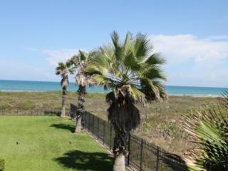 Marisol Condominiums Unit 201 - South Padre Island vacation rentals