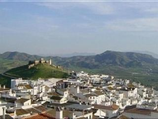 Beautiful Large Townhouse In The Centre Of Alora - Alora vacation rentals