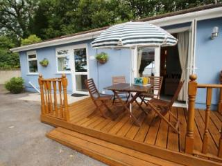 Bluebell Cottage - Llanelli vacation rentals