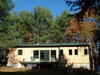Home in the Pines - Penobscot vacation rentals
