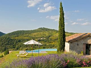 Villa nel Verde - Timo - Murlo vacation rentals