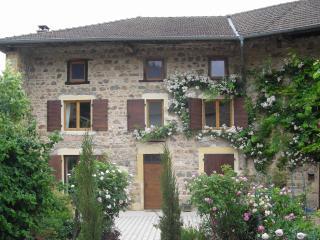Villemartin in Beaujolais - Saone-et-Loire vacation rentals