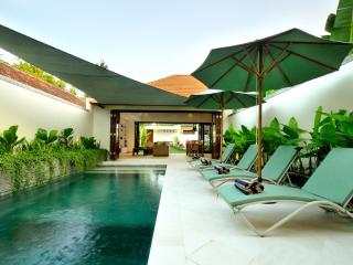 New family friendly 2-Bed Villa with Private Pool - Sanur vacation rentals