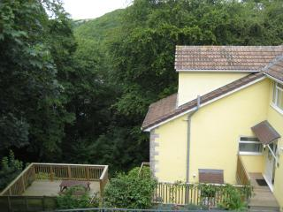 River View Apts - Neap Tide - Looe vacation rentals