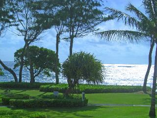 Gorgeous Ocean Views, Beach Steps Away - Kapaa vacation rentals