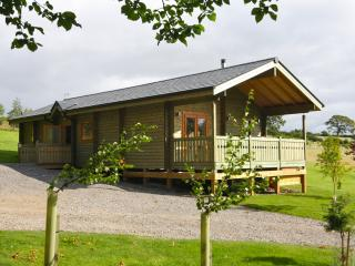Rowan Log Cabin with Hot Tub - Hudswell vacation rentals