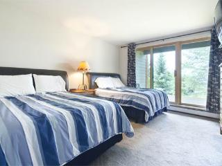 Moraine Townhomes - MO31 - Steamboat Springs vacation rentals