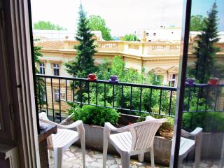 Palace View Apartment - Belgrade vacation rentals