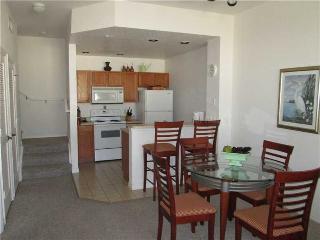 Hyacinth Macaw Disney Vacation Villas - Clermont vacation rentals