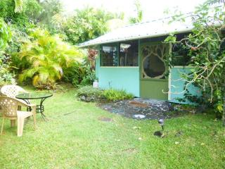 Dolphinsonghawaii by Kehena Beach - Pahoa vacation rentals