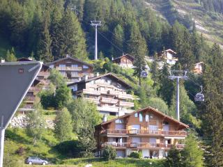 Asters 25 - Anzere vacation rentals