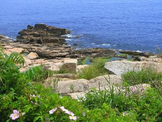 Poet's Cove: Extraordinary views of Sandy Bay and 2 miles to the beach! - Rockport vacation rentals