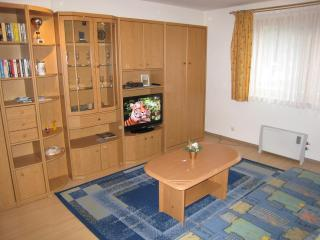 Studio up to 3 - Zell am See - Zell am See vacation rentals