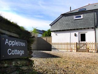 Appletree Cottage - Tintagel vacation rentals