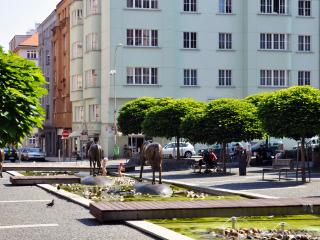 Lovely apartment 10 min to city center! - Czech Republic vacation rentals
