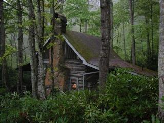 Laurel Mtn Cabin - Laurel Mtn Cabin-Hot Tub_ Wood Burning Fireplace_ WIFI - Fleetwood - rentals