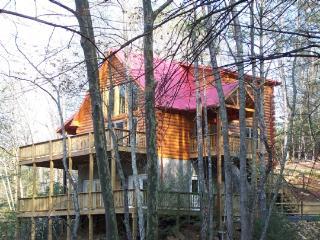 Mountain Lair - West Jefferson vacation rentals