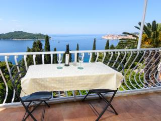 Apartment Dubrovnik Tanja - Dubrovnik vacation rentals