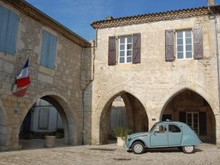 Enjoy authentic french village life! - Castelsagrat vacation rentals