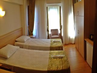 Central , Cosy Flat, 3 Bedded Room - Istanbul vacation rentals
