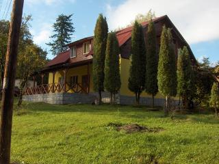 Villa Roseta NorthTransylvania - Carbunari vacation rentals