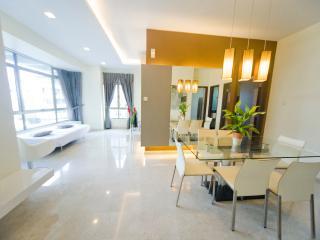 2 bedroom in Novena MRT - Singapore vacation rentals