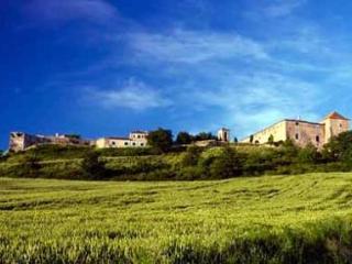 Petit Castelnau De Fezensac - Castera-Lectourois vacation rentals