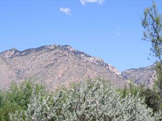 First Floor 2 Bedroom with Great Mountain Views and Newly Remodeled - Tucson vacation rentals
