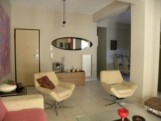 Dreamy 80m2 apartment in Athens - Athens vacation rentals