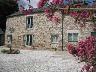 Threshing Barn, Fenteroon Farm - Camelford vacation rentals