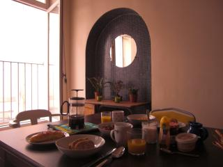 Chez Georges, gracious apt in town centre - Carcassonne vacation rentals