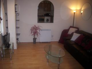 Thomas House,86 Thomas Street - Dublin vacation rentals