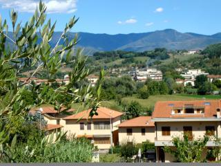 Alle porte del Chianti - San Giovanni Valdarno vacation rentals