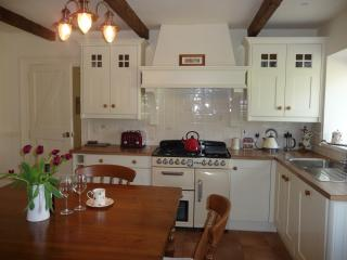 Hawthorn Cottage - Omagh vacation rentals