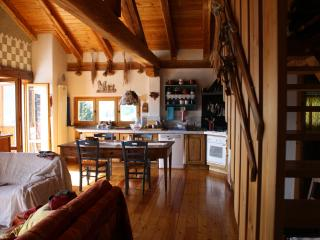 The house of light: nature, relax landscape - Aosta vacation rentals