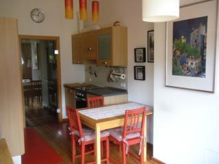 appartamenti in montagna - Bad Kleinkirchheim vacation rentals