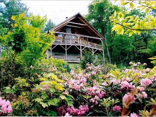 Ollie's Overlook  fabulous multi-level cabin located in Blackberry Gorge - Blue Ridge Mountains vacation rentals