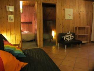 Argentiere skiers and walkers - Argentiere vacation rentals