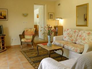 willow cottage - Carcassonne vacation rentals