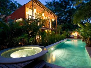 Monkeys &  Parrots  Lush Tropical Paradise   Video - Playa Prieta vacation rentals