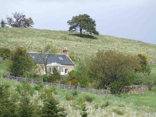 Craigiedows Cottage - Strathdon vacation rentals