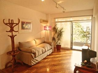 Barrio Norte: Ample, bright, views + pool! - Buenos Aires vacation rentals