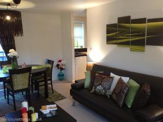 CITYPAD 2 bed/ 2 bath for 6ppl - Banbury vacation rentals
