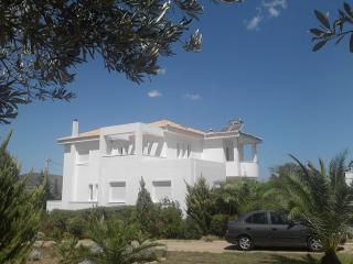 Athens villa, coast area, Villa Laurel - Kalyvia Thorikou vacation rentals