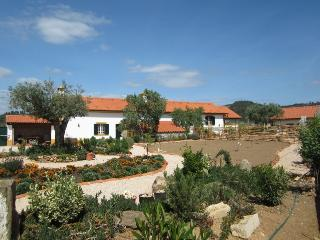 Quinta do Feonix near Tomar - Martinchel vacation rentals