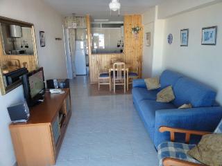 Acuario - Benalmadena vacation rentals