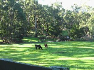 Redlands - Gwinganna - Yarra Valley vacation rentals
