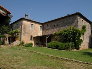 Beautiful  tuscan Villa not far from Siena 18 pax - Siena vacation rentals