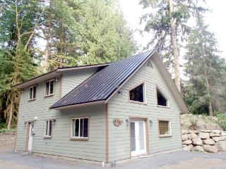 Mt Baker Lodging Cabin #2 - New 4 - bedroom 2 baths sleeps 10. Cabin on acreage with Private Hot Tub and Air Conditioner ! - Glacier vacation rentals